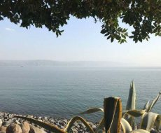 foto del mar morto a rappresentazione della sua faglia sismogena
